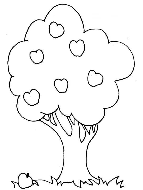 an apple and an apple tree coloring page kids play color