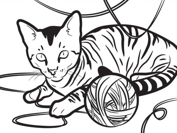 an egyptian kitty cat playing with a yarn coloring page kids