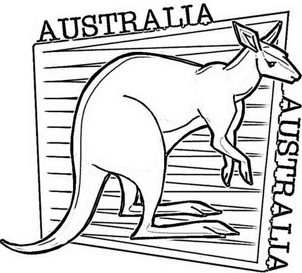 an illustration of kangaroo for australia day coloring page kids