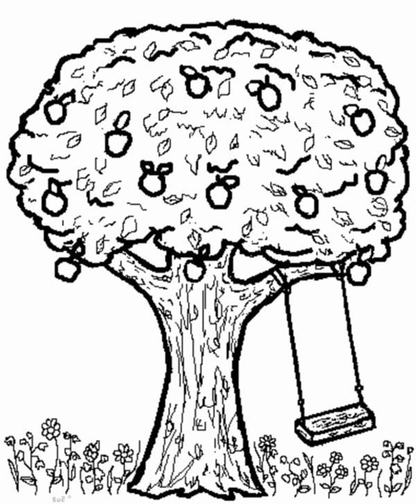 apple tree and swing coloring page kids play color