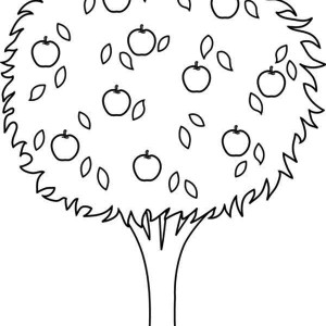 an apple tree coloring page an apple tree coloring page kids