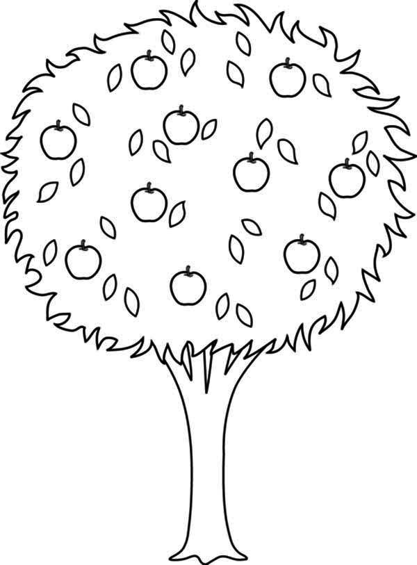 huge apple tree coloring page kids play color