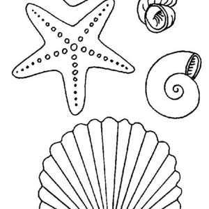 fantastic starfish coloring page kids play color
