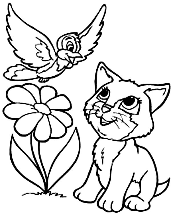 this kitty cat talk with the bird coloring page kids play color