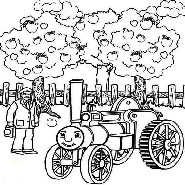 thomas the train and apple tree coloring page kids play color