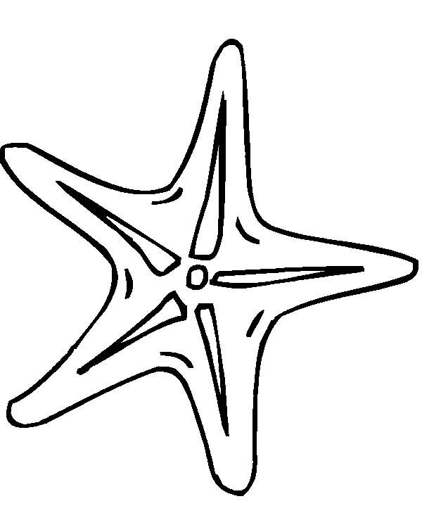 tiny starfish coloring page kids play color
