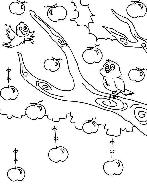 two birds and an apple tree coloring page kids play color