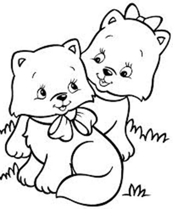 two very cute kitty cat in the park coloring page kids play color