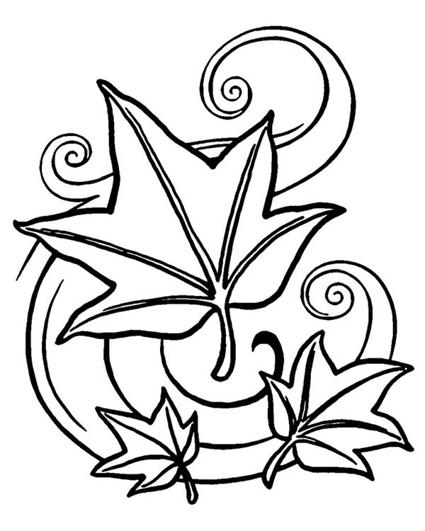 autumn maple fall leaf coloring page kids play color