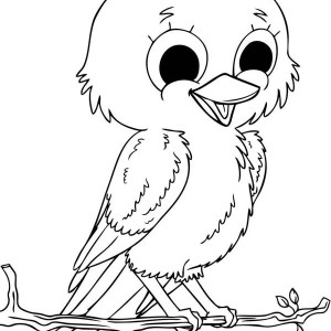 baby robin coloring page kids play color