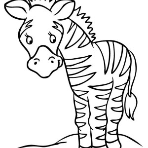 small harems of zebra coloring page kids play color