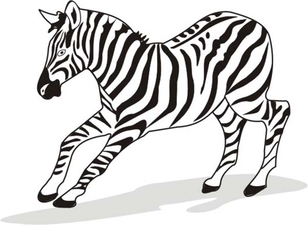 small harems of zebra coloring page small harems of zebra