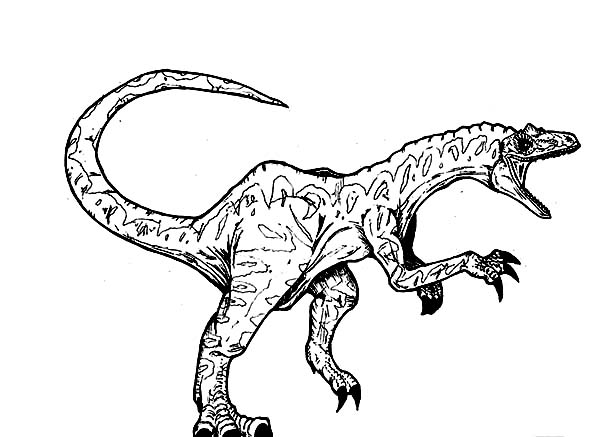 allosaurus screaming coloring page kids play color