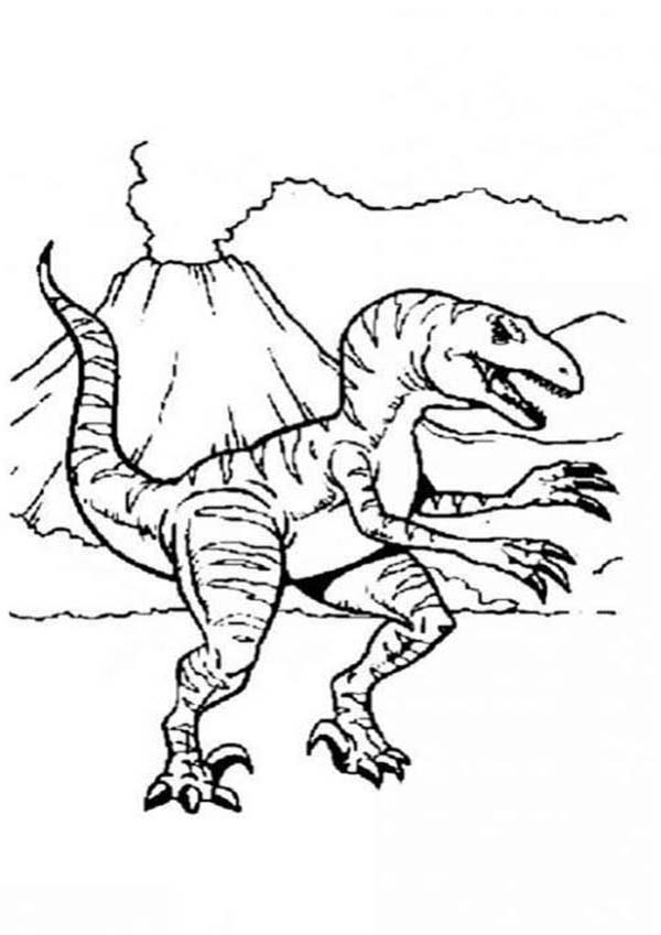 allosaurus and active volcano coloring page kids play color