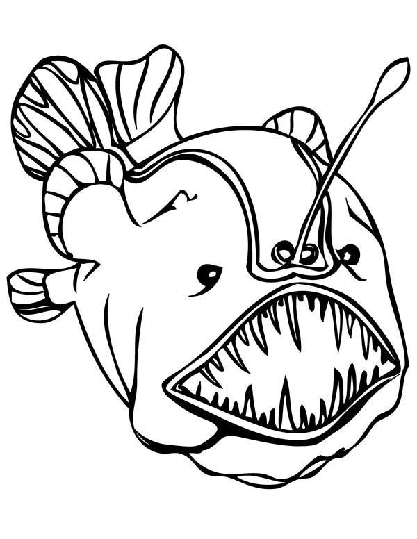 deep angler