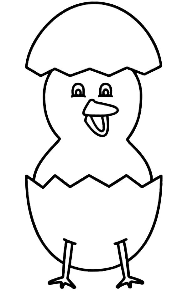 baby chick standing with his eggshell coloring page kids play color