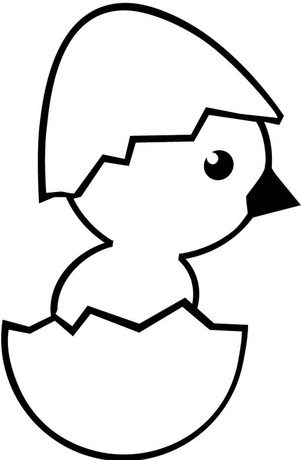 baby chick wearing eggshell hat coloring page kids play color