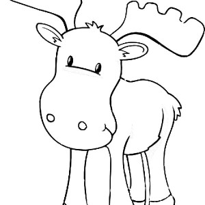 baby moose coloring page baby moose coloring page kids play color