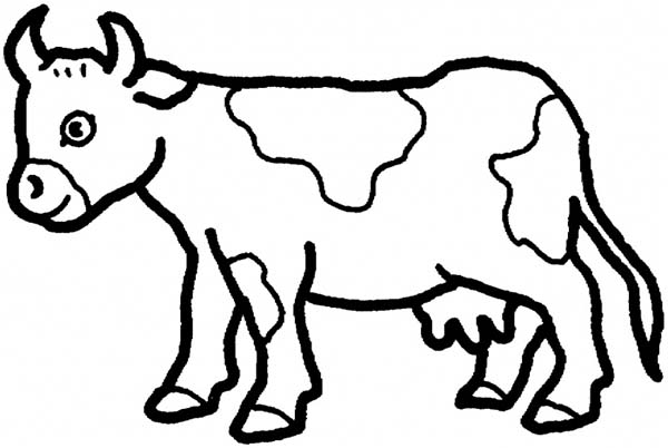 cow long horn cow coloring page