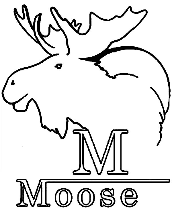 m is for moose coloring page kids play color