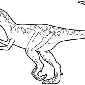 drawing of allosaurus coloring page kids play color