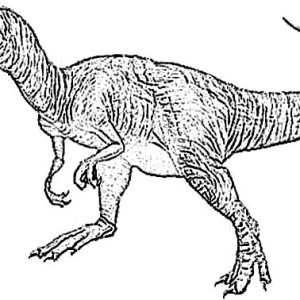 picture of allosaurus coloring page kids play color