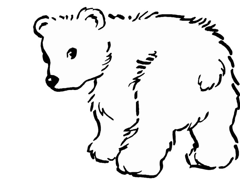 baby polar bear coloring page kids play color