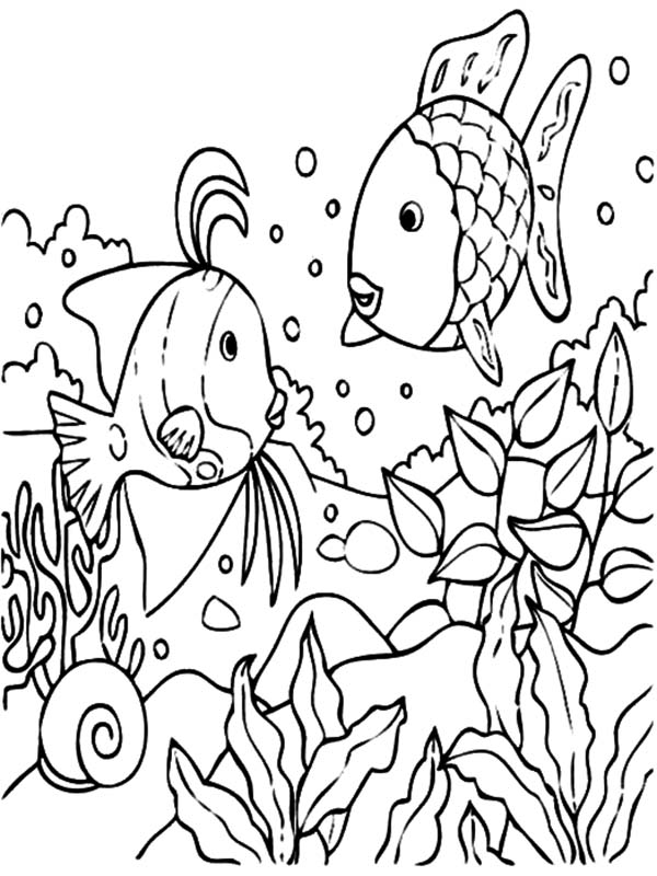 tropical fish coral reef coloring pages kids play color