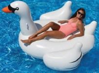 The Hamptons Giant Swan Float