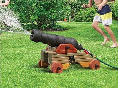 The Backyard Aquatic Bombard 1
