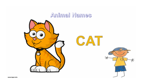 orange colored cat illustration with boy character