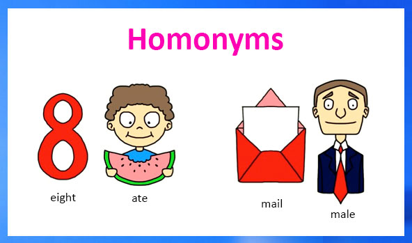 Image result for homonyms