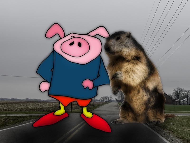 happyhhog