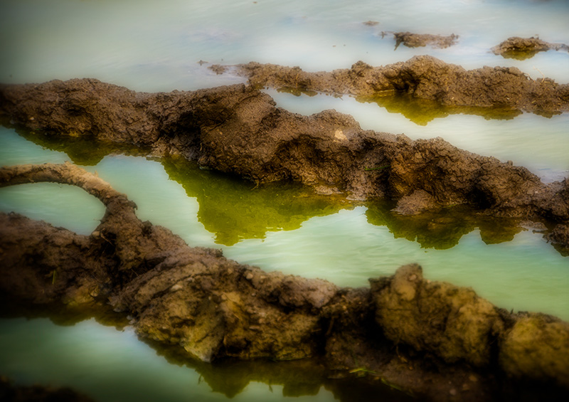 muddywaters