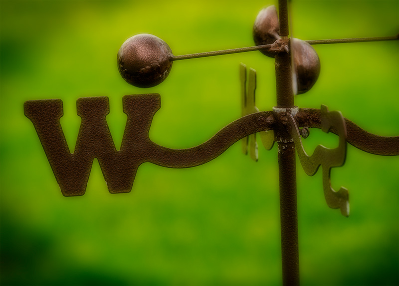 westererere