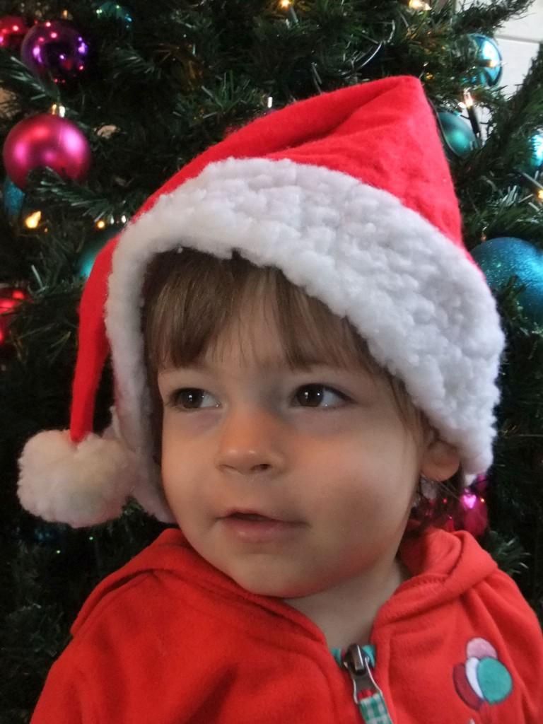 Freude auf Weihnachten