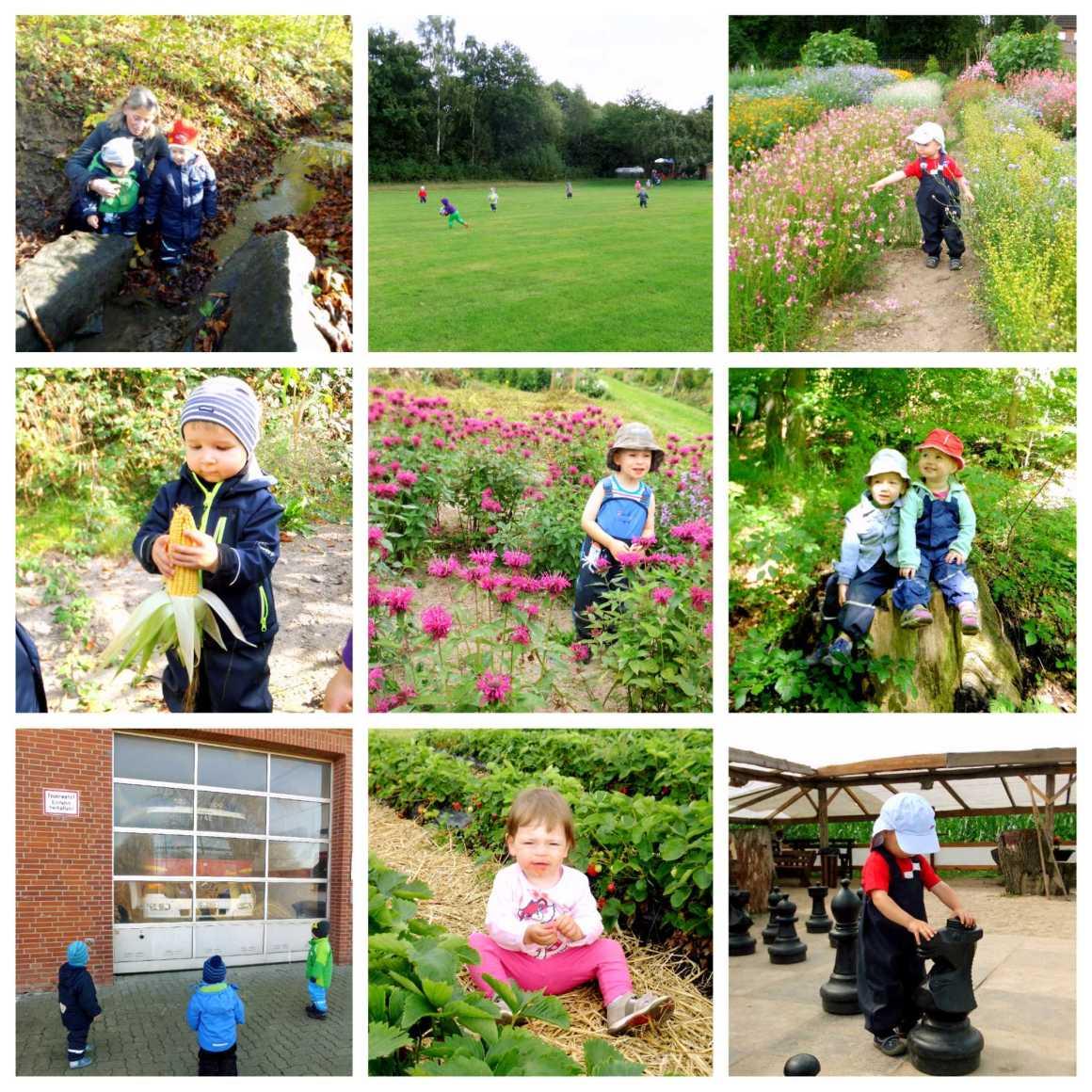 Kita Kid Zone Naturerlebnisse 1