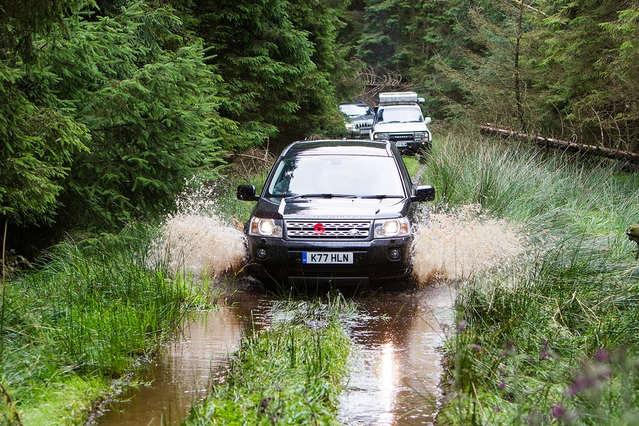 kielder_safari_aug_2017_0032