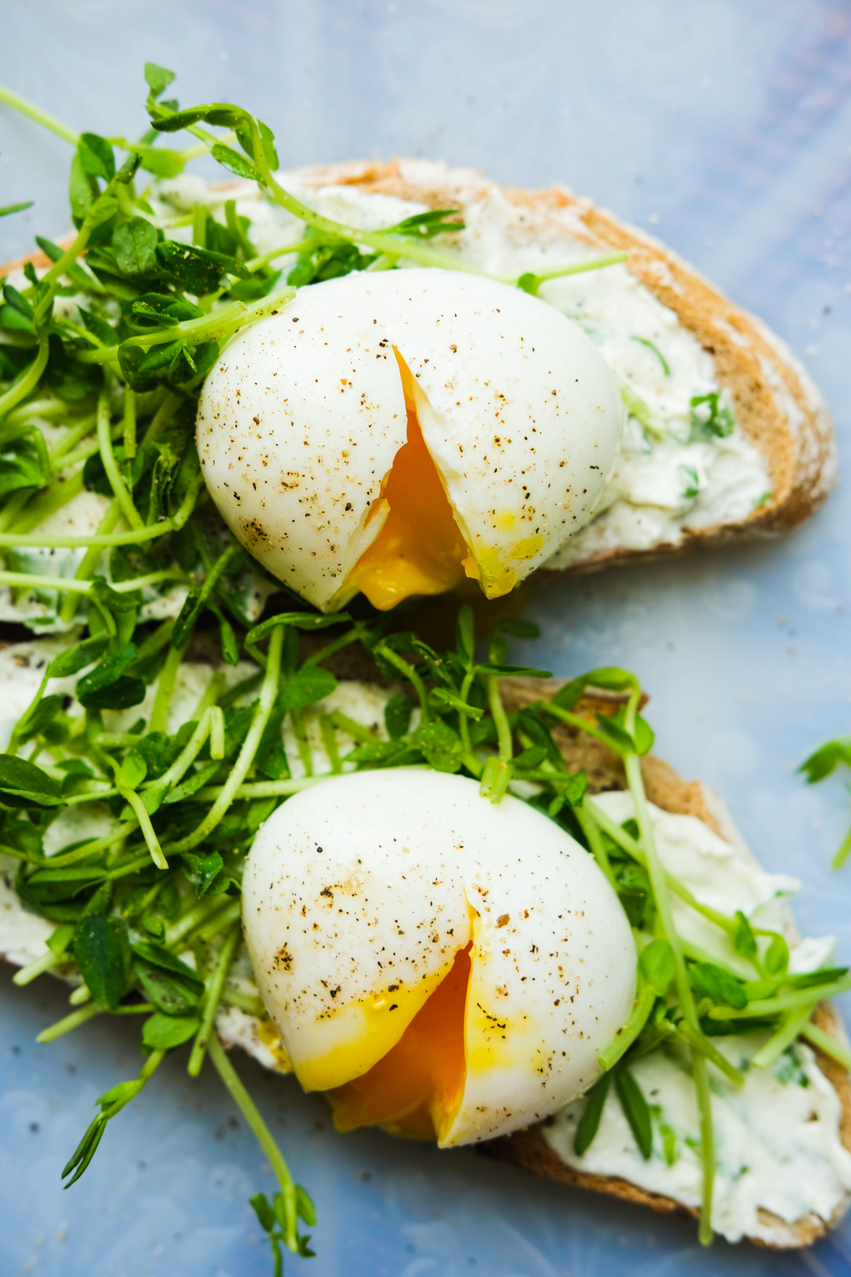 toast with chive cream cheese sprouts and jammy eggs
