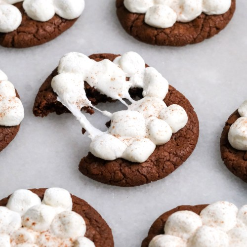 Melty Hot Chocolate Cookies