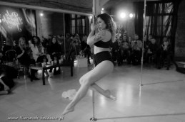 galeria fotografii Pole Dance Jungle Challenge, Szczecin 12.03.2016