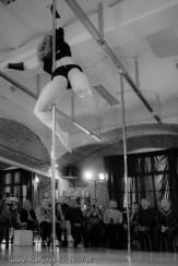 galeria fotografii Pole Dance Jungle Challenge, Szczecin 12.03.2016