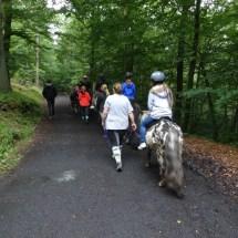 Ponyranch Arnsberg - Sommer 2016 (39)