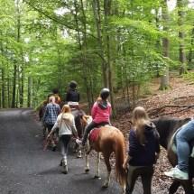 Ponyranch Arnsberg - Sommer 2016 (51)