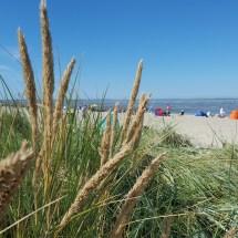 Ein Tag am Meer - KiJu Neheim (53)