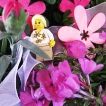 Lego-Fotowelt von Anna (19)