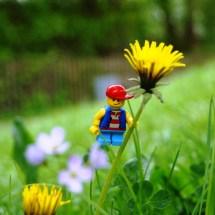 Lego-Fotowelt von Katharina und Celina- (33)