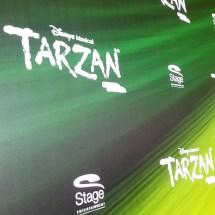 Musical Tarzan - KiJu 2017 (11)