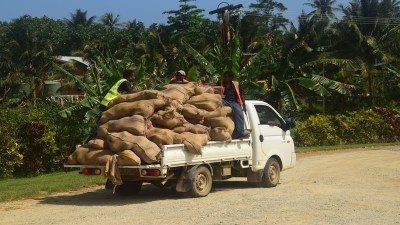 Copra bags transported on a vehicle