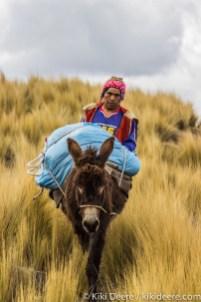 Mule Driver, Andes, Peru